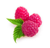 Raspberries. Isolated on white background Stock Photography