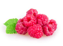 Raspberries. Isolated on white background stock images