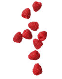 Raspberries isolated on white background, close-up Royalty Free Stock Photos
