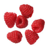 Raspberries isolated on white background, close-up. Raspberries isolated on white background Stock Image