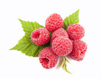 Raspberries isolated on white background Royalty Free Stock Images