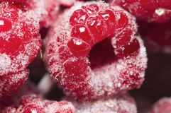 Raspberries juicy hole Royalty Free Stock Images