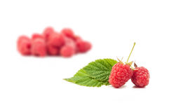 Raspberries. And leaf isolated on white background stock images