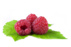 Raspberries with leaf isolated on white. Fresh raspberries with leaf isolated on white Stock Images