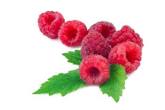 Raspberries with leaf on white. Background Stock Photography