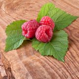 Raspberries with leaf on wooden background Stock Photos