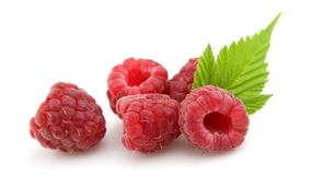 Raspberries with leafs Royalty Free Stock Photography