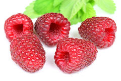Raspberries and leaves Stock Image