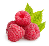 Raspberries with leaves isolated Stock Photography