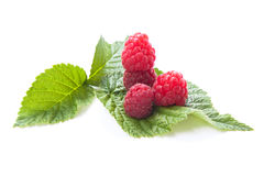 Raspberries with leaves isolated on white background. Raspberries laying on leaves and isolated on white background with shadows Stock Images