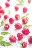 Raspberries and leaves Stock Images