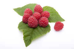 Raspberries are on the leaves raspberries Royalty Free Stock Images