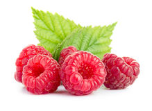 Raspberries with leaves Royalty Free Stock Images