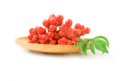 Raspberries with leaves. Rowan berries isolated on a white background cutout Stock Photo