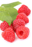 Raspberries. With leaves on white background Stock Photos