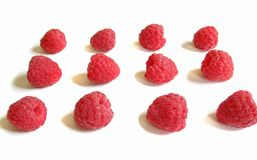 Raspberries in line Stock Images