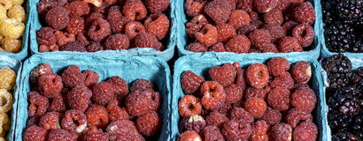 Raspberries at a local market for sale. Fresh raspberries sweet and ready to eat Royalty Free Stock Images