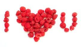 Raspberries love Stock Images