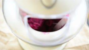 Raspberries and lychee sorbet stock footage