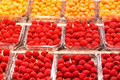 Raspberries on the market. Assortment of fresh rasberries on display at a produce market Stock Photos