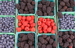 Raspberries in the middle Stock Photo