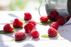 Raspberries with mint. Delicious raspberries with mint collected forest Stock Photography