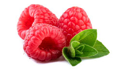 Raspberries with mint leaf close up Royalty Free Stock Images