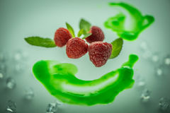 Raspberries and mints Stock Images