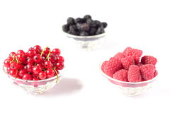 Raspberries, mulberries, red currant in bowls Stock Images