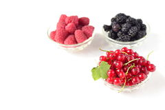 Raspberries, mulberries, red currant in bowls Royalty Free Stock Photography