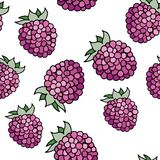 Raspberries pattern Royalty Free Stock Image