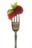 Raspberries with peppermint Stock Images