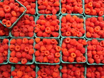 Raspberries at Pike Place Market in Seattle Stock Photography