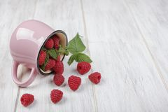 Raspberries and the pink mug. Raspberries spilled out of the pink mug on the wooden table Stock Photography