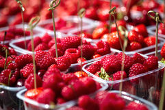 Raspberries in a plastic boxes Royalty Free Stock Photography