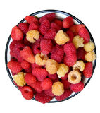 raspberries on the plate Royalty Free Stock Photo