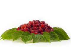 Raspberries on a plate with leafs. Raspberries on a plate with a leafs on white background Royalty Free Stock Photos