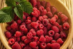 Raspberries in a plate,in wooden bowl,basket/bush branch/growing. Raspberries,raspberries background closeup photo,high resolution product,Delicious first class Royalty Free Stock Photos