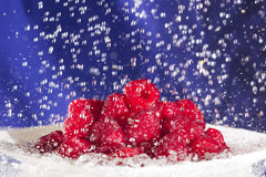 Raspberries in the Rain Royalty Free Stock Image