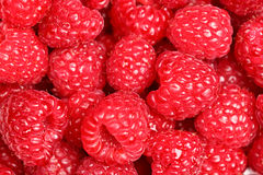 Free Raspberries - Raspberry Texture Background Royalty Free Stock Photography - 23604227