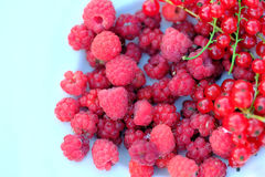 Raspberries and red currant. Close up photo of different ripe summer berries lying on a plate. There`re some garden raspberries and red currant berries: juicy Royalty Free Stock Image