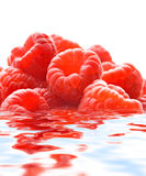 Raspberries reflected in water Stock Photography