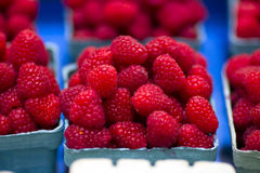 Raspberries for sale. Image of raspberries for sale Stock Photography