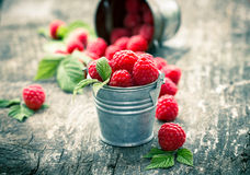 Raspberries in the small bucket. On the wooden table Royalty Free Stock Photo