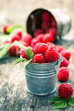 Raspberries in the small bucket. On the wooden table Royalty Free Stock Images