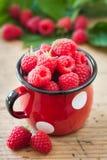 Raspberries. In small mug. Thin depth of field Stock Photos