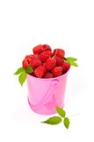 Raspberries. In a small pink metal bucket. Selective focus Royalty Free Stock Photos
