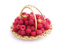 Raspberries in a small wicker basket Royalty Free Stock Image
