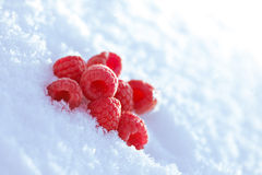 Raspberries in the snow Royalty Free Stock Photos