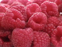 Raspberries. Some raspberries - food and drink series Royalty Free Stock Photos